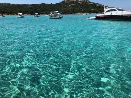 Excursión a las islas Magdalenas