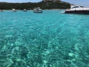 Excursion a las islas Magdalenas