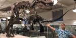 Que museos son gratis en Nueva York