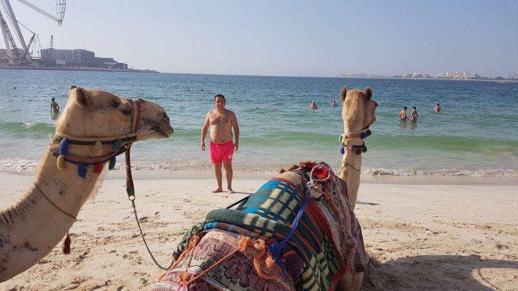 playas de Dubai publicas