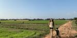 el mejor seguro de viajes para camboya