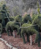 bosque encantado de Madrid